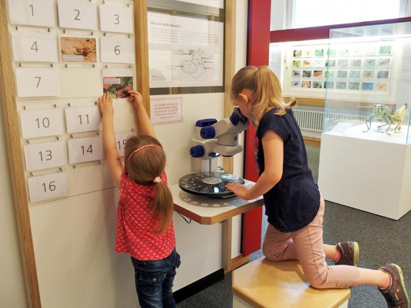 <p>Naturforscher in der Ausstellung</p>